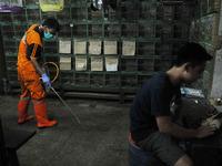 Prevent bird flu in Jakarta