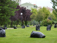 Municipality Workers Mow Grass in Summer in Ankara