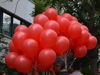 Balloons for Arrested Educators on Hunger Strike in Ankara