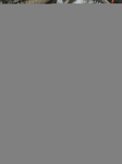 Ciliwung River Garbage Waste