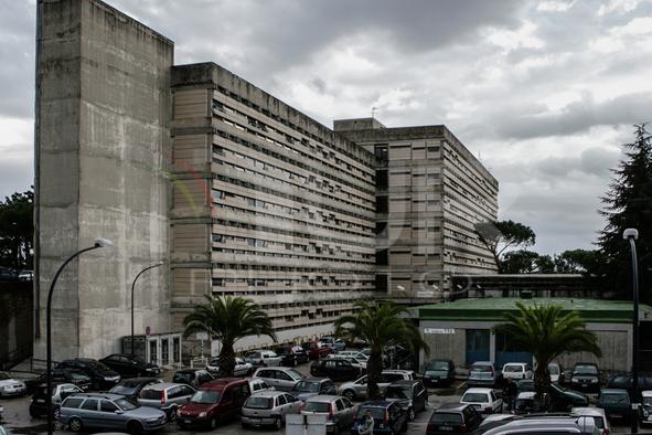 The Neapolitan Hospitals