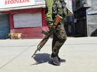 Seven Militants Killed In Kashmir