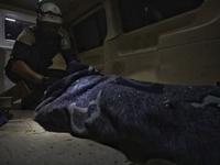 Missile Bombing On Idlib