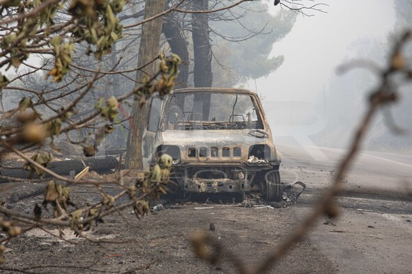 Forest Fire In Limni, Greece