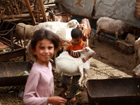 Palestinian Bedouin Family in Gaza