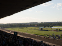 Triple Crown of Horse Racing: California Chrome Fails to Win the Belmont Stakes